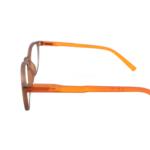 PG Comp brown orange c